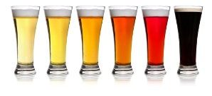 Six glasses showing the color range of various beers