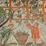 mosaid showing two Romans gathering grapes