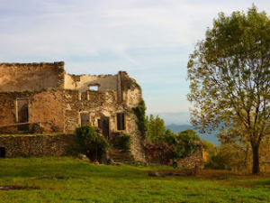 Ruined stone castle, lake, grassy field, part of a tree